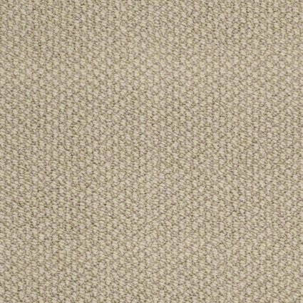Careless Whisper By Shaw Tuftex Carpet Residential Durable