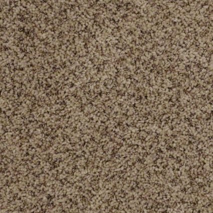 Berber By Shaw Tuftex Carpet Plush Casual Carpets In Dalton