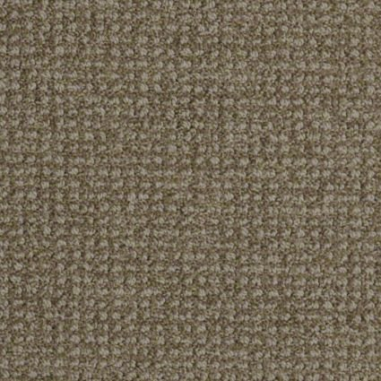 Charming By Shaw Tuftex Carpet Pattern Loop Residential