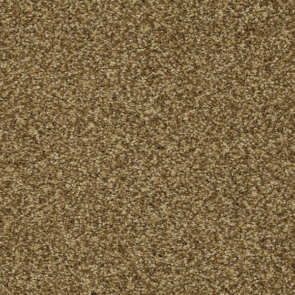 Days Like This By Shaw Texture Carpet Residential Carpets In