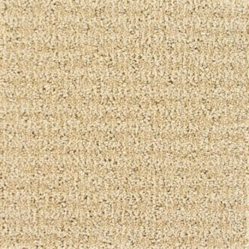 Buy Eclipse By Camelot Nylon Stainmaster Carpets In Dalton