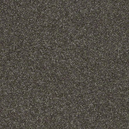 Buy Full Court By Shaw Queen Polyester Carpets In Dalton