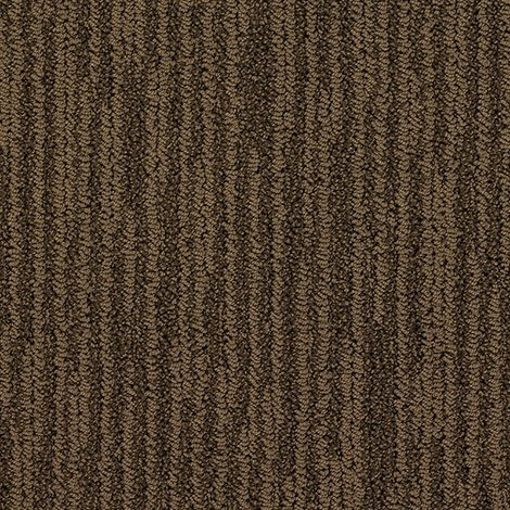 Buy Icon By Camelot Nylon Stainmaster Carpets In Dalton