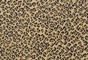 Buy Lake Safari By Stanton Royaltron Fiber Carpets In Dalton