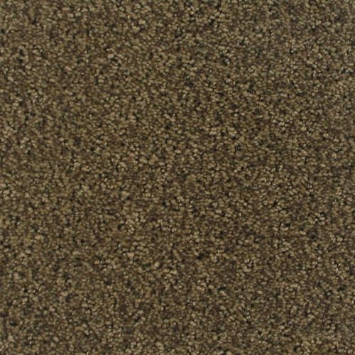 Buy Luna By Camelot Nylon Stainmaster Carpets In Dalton