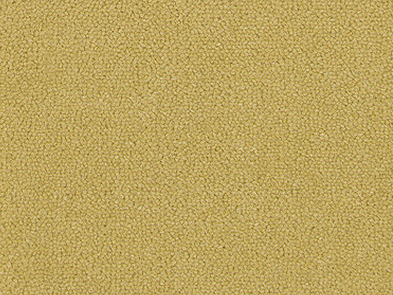 Magnifika 9 By Bellbridge Wool Carpet Residential