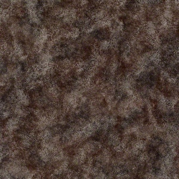 Mustang Sally By Shaw Philadelphia Carpet Durable