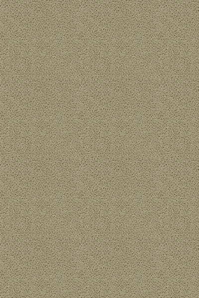 Buy Sterling By Lexmark Pattern Texture Carpets In Dalton