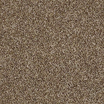 Buy Work The Color By Shaw Queen Polyester Carpets In