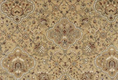 Capella By Stanton Carpet Residential Pattern