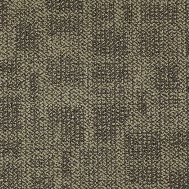 Buy Area By Shaw Philadelphia Contract Durable Carpets