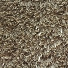 Shaggy Majestic by Stanton Carpet