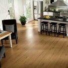 Rustics Premium New England Long Plank by Armstrong