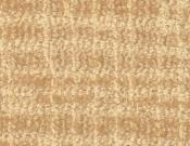 Masland-Carpet-Adagio-Sycamore