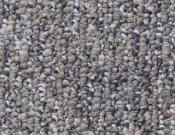 Shaw- Carpet- Philadelphia- All-Access - Available
