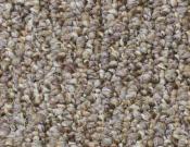 Shaw- Carpet- Philadelphia- All-Access - Open door