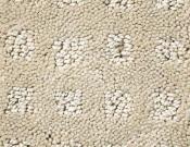 Shaw-Carpet-Queen-Alluring-Disposition-Barista