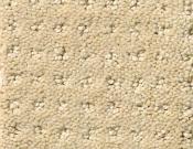 Shaw-Carpet-Queen-Alluring-Disposition-Shoreline