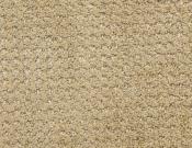 Masland-Carpet-Alpha-Electrode