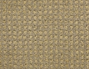 Masland-Carpet-Alpha-Ionic
