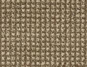 Masland-Carpet-Alpha-Neuron