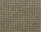 Masland-Carpet-Alpha-Pulse