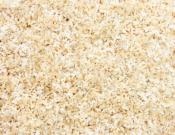 Cavan-Carpets-Alpine-Cream & White