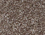 Shaw-Carpet-Queen-Always-Ready-I-Cobble Brown
