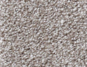 Shaw-Carpet-Queen-Always-Ready-I-Flint Stone