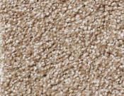 Shaw-Carpet-Queen-Always-Ready-I-Warmth