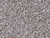 Shaw-Carpet- Always- Ready- II- Flint Stone