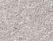 Shaw-Carpet- Always- Ready- II- Studio Taupe