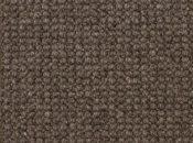 scottish gray