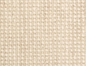 Masland-Carpet-Ambiance-Driftwood
