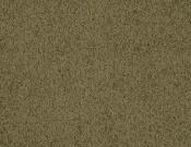 Masland-Carpet-Americana-Adirondack