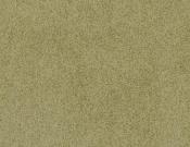 Masland-Carpet-Americana-Appalachia