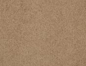 Masland-Carpet-Americana-Bighorn