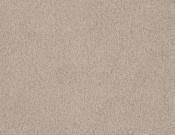 Masland-Carpet-Americana-Breckenridge
