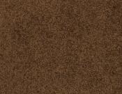 Masland-Carpet-Americana-Burro
