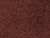 Masland-Carpet-Americana-Chuparosa
