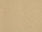 Masland-Carpet-Americana-Cliffrose