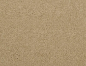 Masland-Carpet-Americana-Coyote