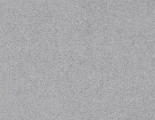 Masland-Carpet-Americana-Daytona