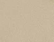 Masland-Carpet-Americana-Mesa