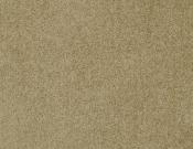Masland-Carpet-Americana-Mt. St. Helens