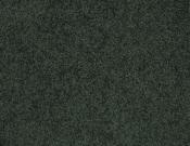 Masland-Carpet-Americana-Ozark