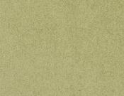 Masland-Carpet-Americana-Park