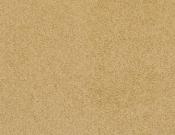 Masland-Carpet-Americana-Pier