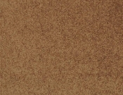 Masland-Carpet-Americana-Plateau