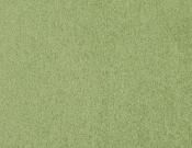 Masland-Carpet-Americana-Playground